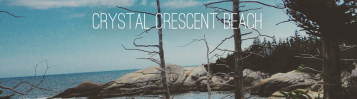 Crystal Crescent Beach feature image