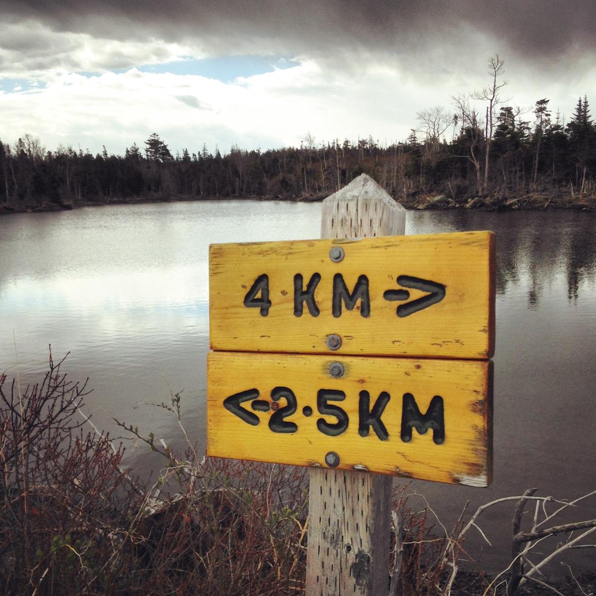 Salt Marsh Trail off-leash dog-friendly