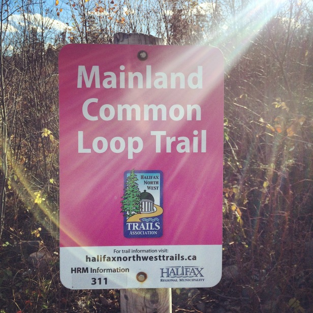 Mainland Common Loop Trail with dog