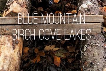 Dog-friendly fun at Blue Mountain Birch Cove Lakes