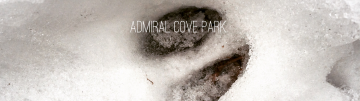 Admiral Cove Park Dog-Friendly