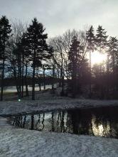 Ashburn Golf Club Off-Leash