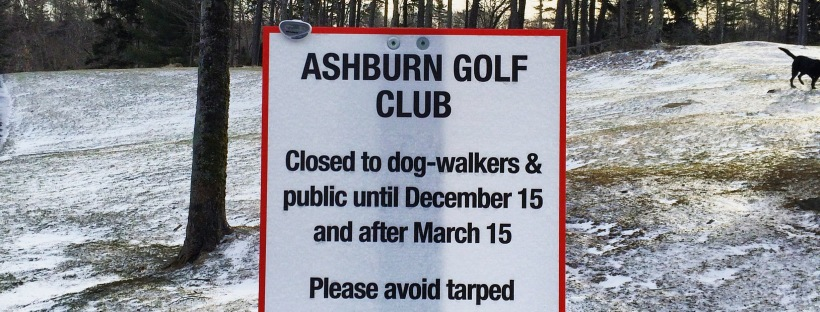 Ashburn Golf Club Dog-Friendly