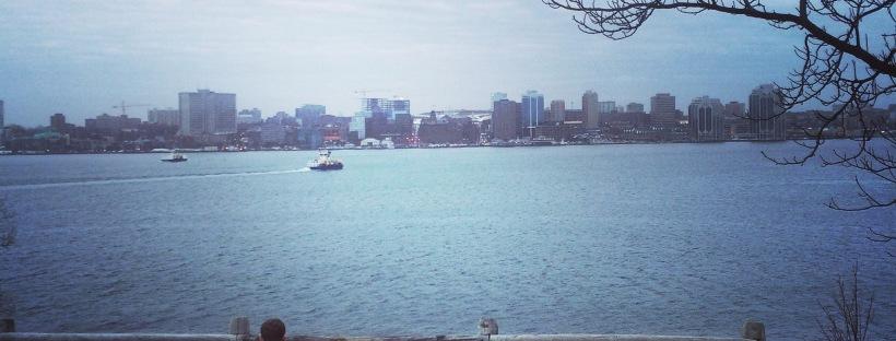Dartmouth Harbourwalk Dog-Friendly Halifax Harbour View