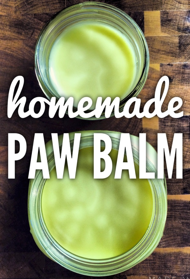 A Muddy Playdate And Homemade Paw Balm Recipe Halifax