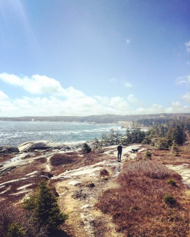 Herring Cove Provincial Park Reserve in Halifax, Nova Scotia is dog friendly!