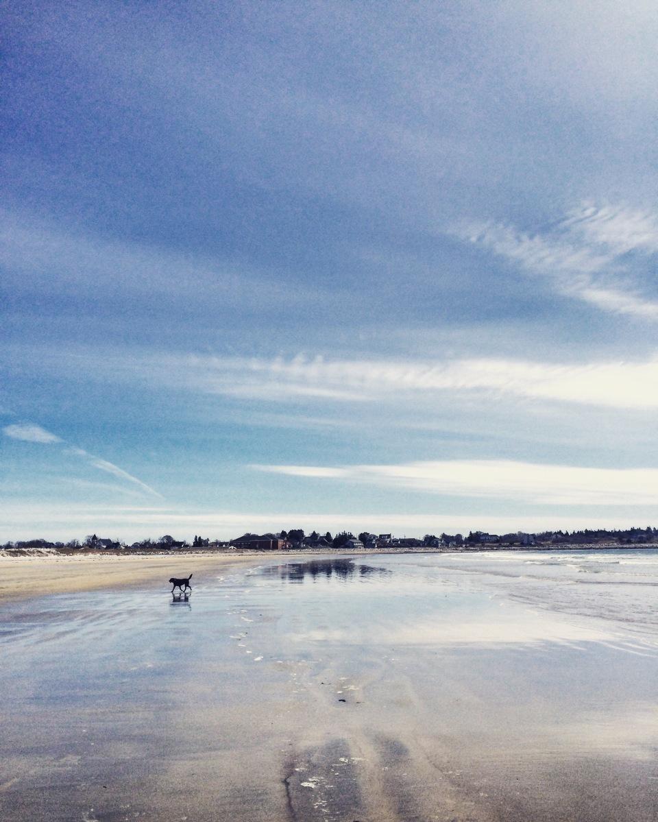 Crescent Beach in Lockeport, NS - a beautiful, dog-friendly beach