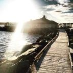 Enjoy a dog-friendly east coast experience at MacCormacks Beach in Eastern Passage, NS