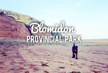 Camping with dogs at Blomidon Provincial Park, a dog-friendly campground