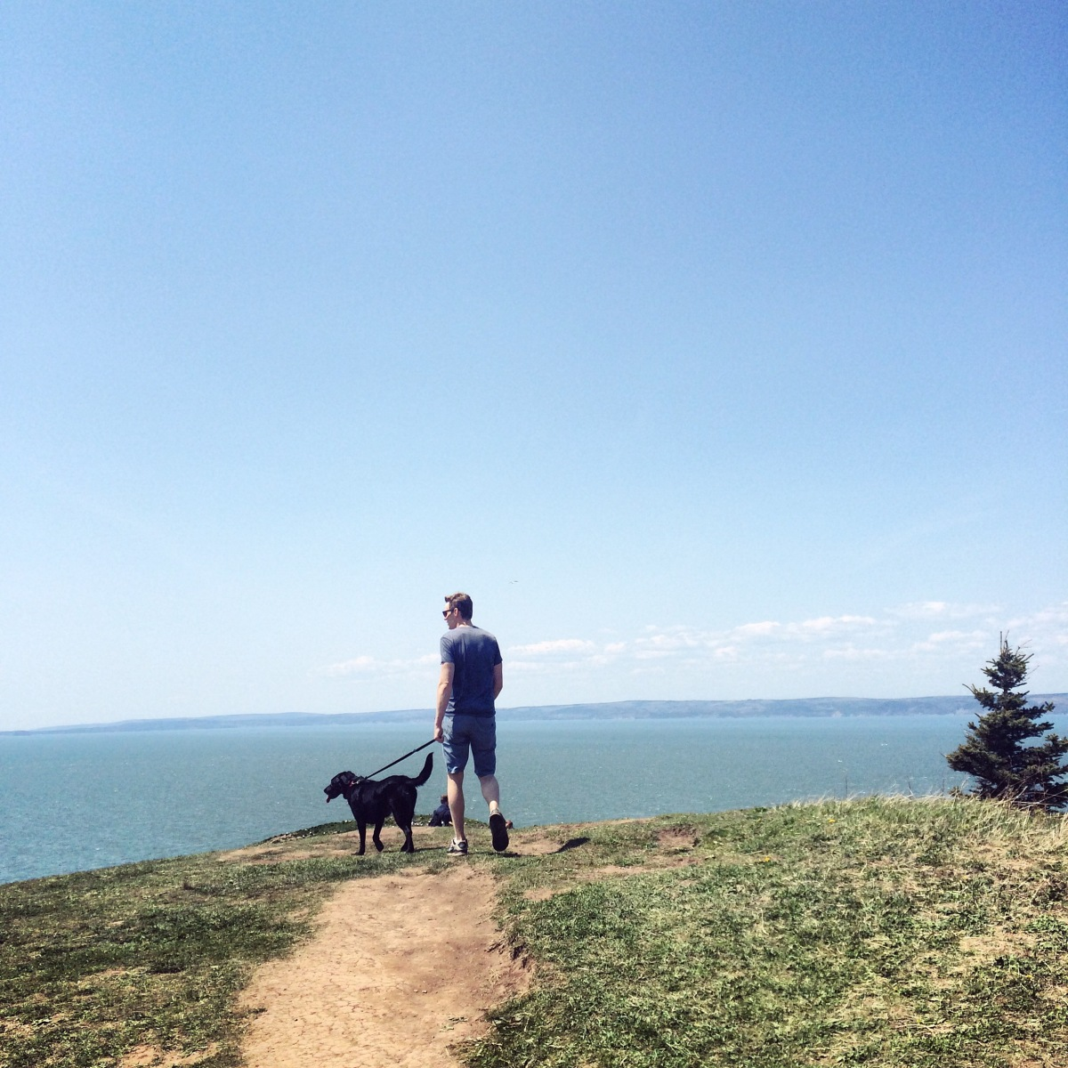 Hiking with dogs at Cape Split, Nova Scotia! This trail is dog-friendly