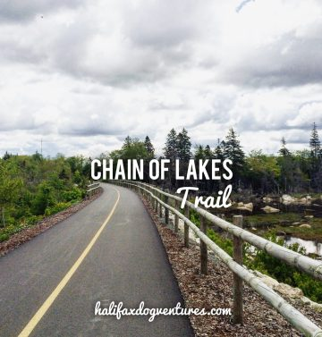 Chain of Lakes Trail in Halifax, Nova Scotia is dog-friendly! A great place to go jogging with your dog