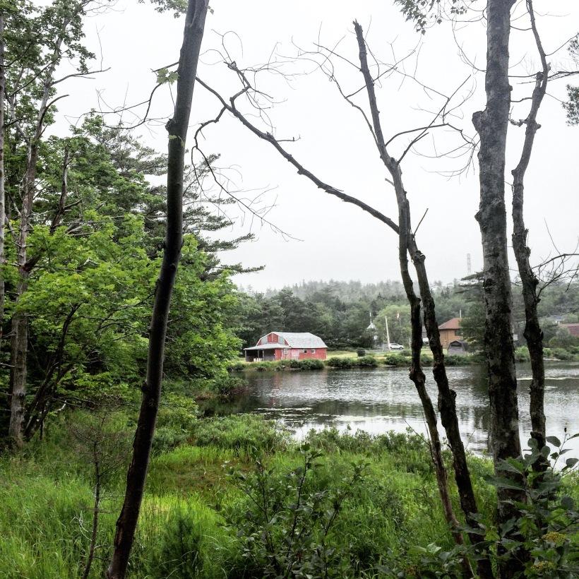 Shubenacadie Trail in Waverley, Nova Scotia Off-Leash Dog Friendly