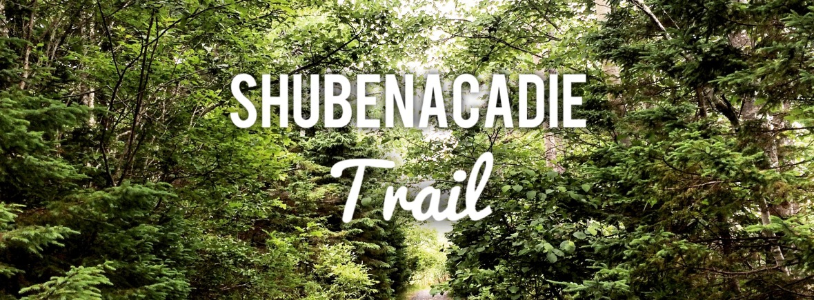Shubenacadie Trail in Waverley, Nova Scotia Off-Leash Dog Friendly