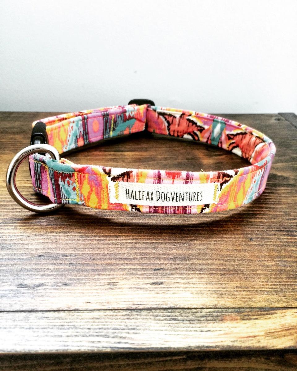 Diy adjustable dog collar tutorial halifax dogventures jeuxipadfo Gallery
