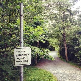 Point Pleasant Park in Halifax, Nova Scotia Off-Leash Dog Friendly