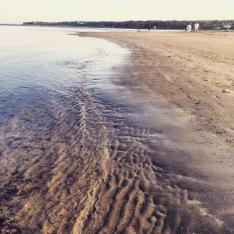 Rainbow Haven Beach in Cole Harbour, Nova Scotia Off-Leash Dog Friendly