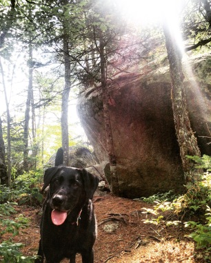 Crowbar Lake Trail in Porters Lake, Nova Scotia Off-Leash Dog Friendly