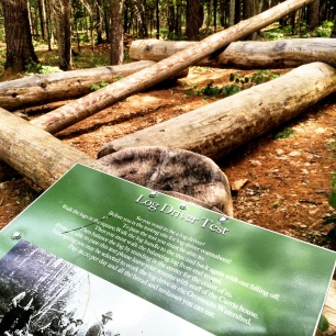 White Rapids Adventure Trail in Fredericton Junction, New Brunswick Off-Leash Dog Friendly