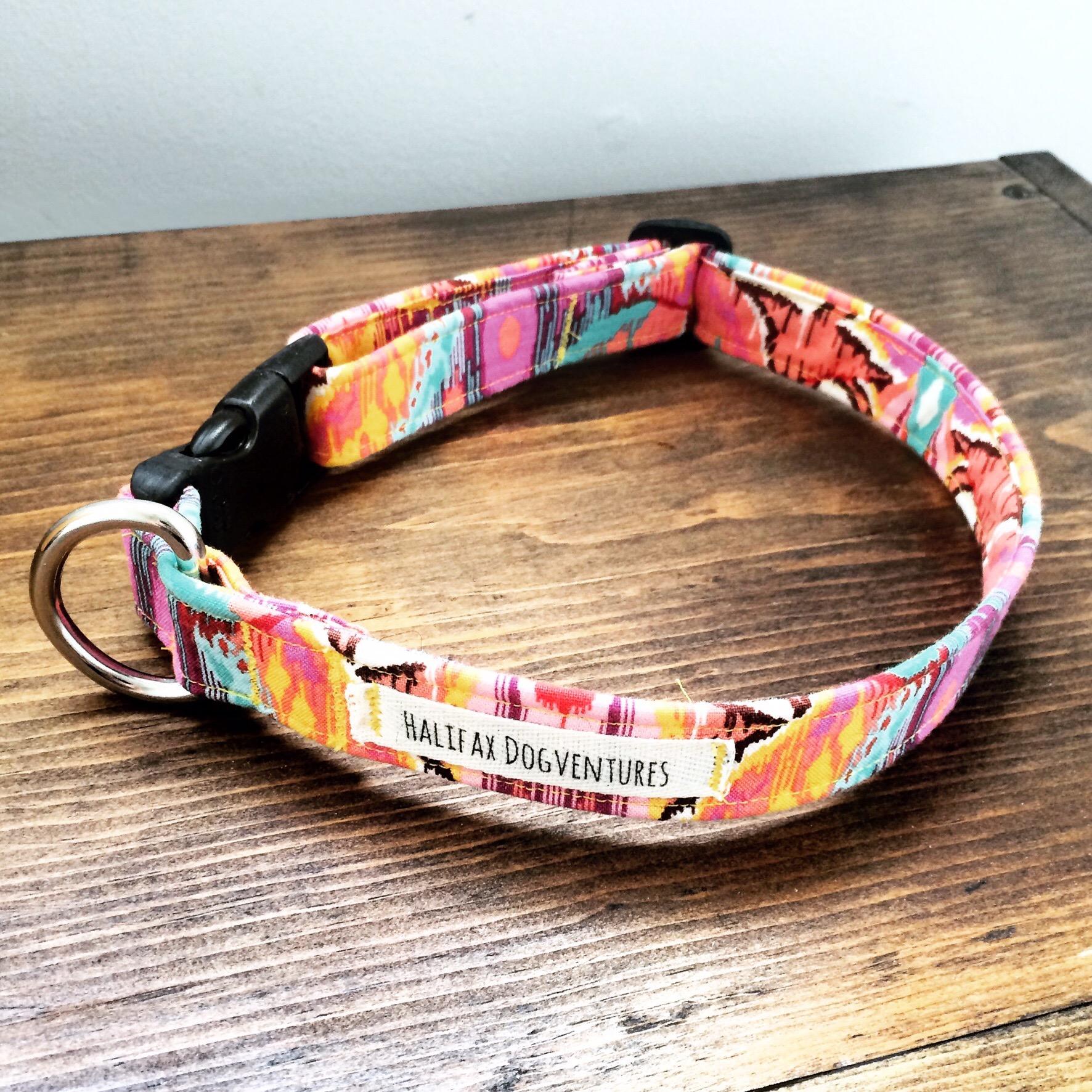 Diy adjustable dog collar tutorial halifax dogventures img7430g jeuxipadfo Gallery