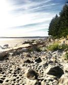 Port Joli Beach in Port Joli, Nova Scotia Off-Leash Dog Friendly