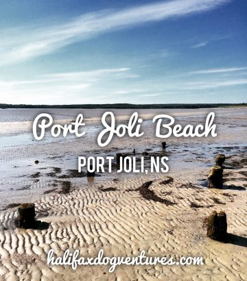 Port Joli Beach in Port Joli, Nova Scotia Off-Leash Dog Friendly